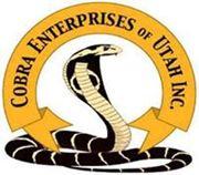 Picture for manufacturer Cobra Enterprises