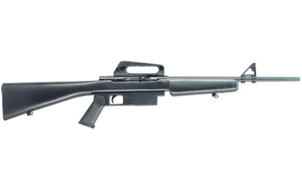 ARMSCOR M1600 22LR 10RD BL
