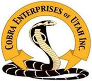Picture for manufacturer Cobra Enterprises