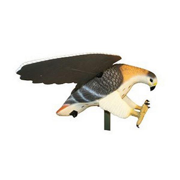 MOJO Hawk
