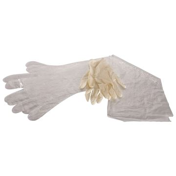 Picture of Field Dressing Gloves: Surgical& Shoulder