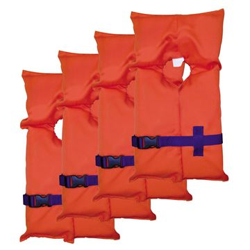 Picture of PFD 1550 Cat 4-1530's Carry Bag Clr